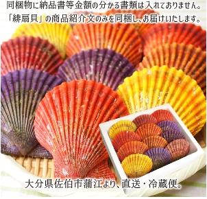 ヒオウギ貝 まると水産